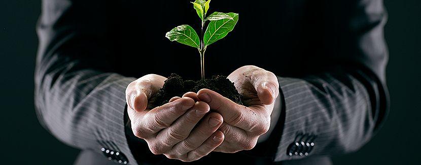 Sustentabilidade: a Gestão de Facilities em prol do ecologicamente correto