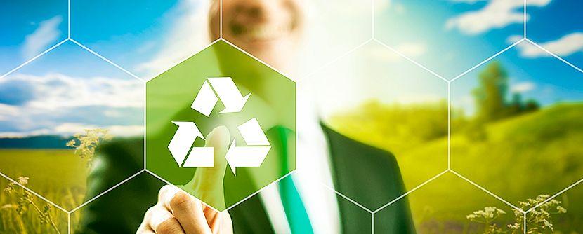 Sustentabilidade empresarial: pesquisa aponta práticas mais valorizadas