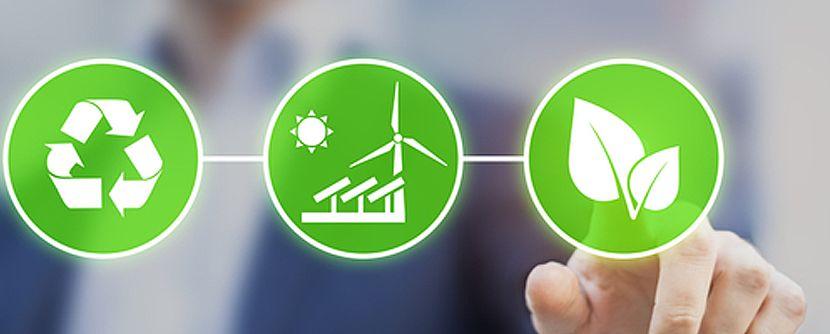 """""""Se a sustentabilidade não estiver enraizada na cultura da empresa, ela acaba se perdendo"""", alerta Lamberto Grinover"""